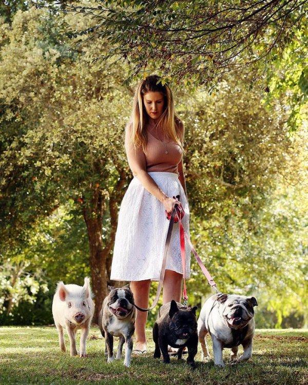 12 фото из жизни свинки, которая думает что она собака