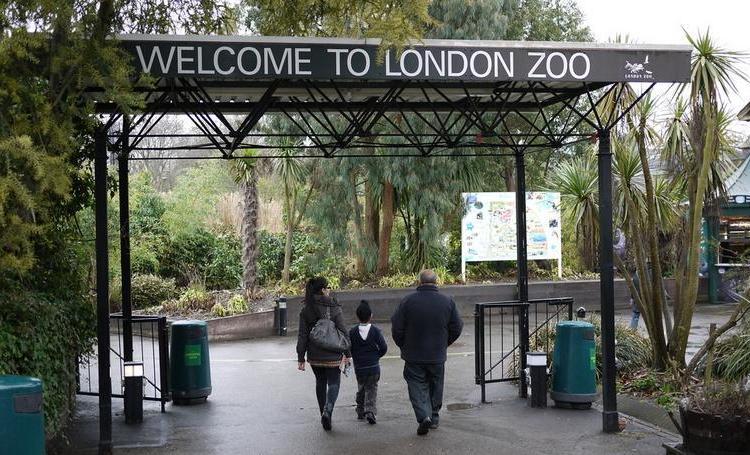 Еще одна достопримечательность Лондона – первый в мире научный зоопарк