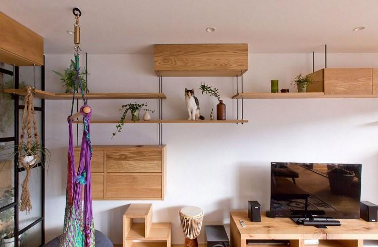 Интерьер комнаты, где будет уютно и кошке, и ее хозяевам