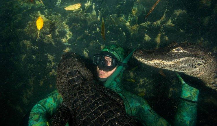 Фото в обнимку с аллигаторами: серые будни Криса Жилетта