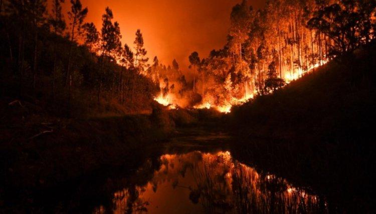 Португалия страдает от самого масштабного пожара за последние 50 лет