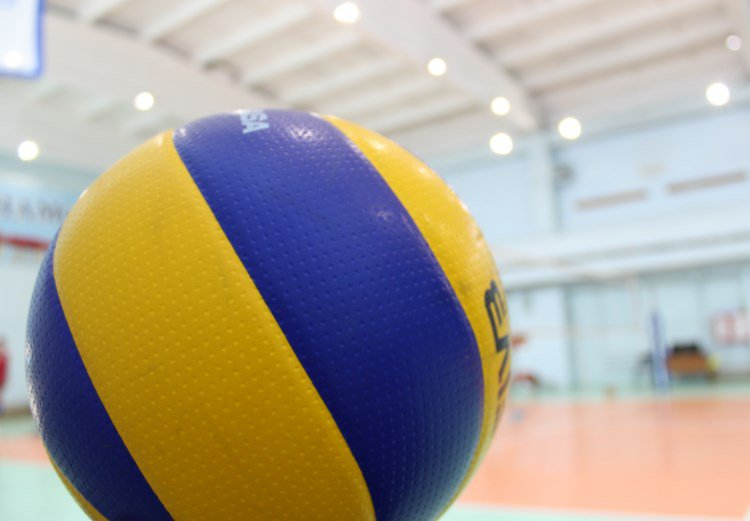 Где и как делать ставки на волейбол?
