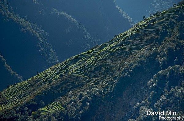 Уникальная природа и культура Непала