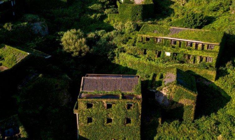 Природа вернула власть над бывшим поселением в Китае 3